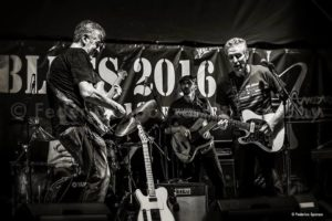 AmenoBlues-Guitars-2016-Federico-Sponza-6